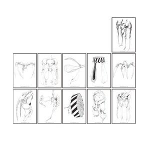 敵性怪獣クリアカード:ブラインド(全11種)  <ぼくらの展>