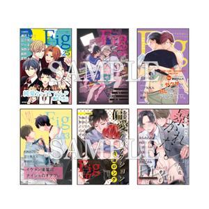 歴代『Fig』カバーイラストカード/全6種セット〈Fig創刊50号記念展〉